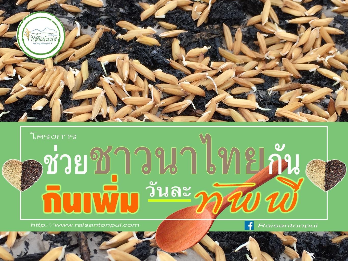 ช่วยชาวนาไทยกัน